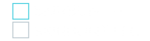 skirbunt logo transparent